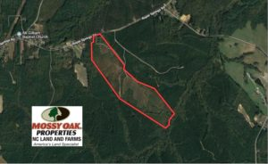 SOLD!  102 Acres of Hunting Land For Sale in Halifax County NC!