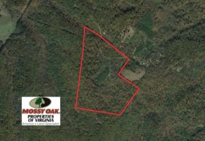 UNDER CONTRACT!  99 Acres of Hunting Land for Sale in Rockbridge County VA!