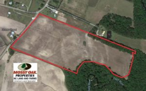 SOLD!  36 Acres of Farm Land For Sale in Jones County NC!