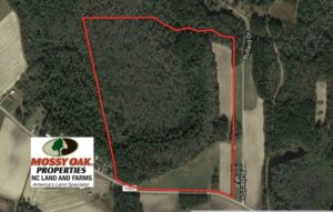 SOLD!  75 Acres of Farm and Timber Land For Sale in Columbus County NC!