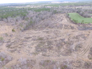 SOLD!  27.5 Acres of Prime Hunting and Recreational Land For Sale in Dinwiddie County VA!