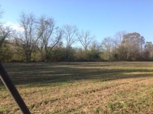 UNDER CONTRACT!!  31 Acres of Riverfront Hunting Land For Sale in Halifax County VA!
