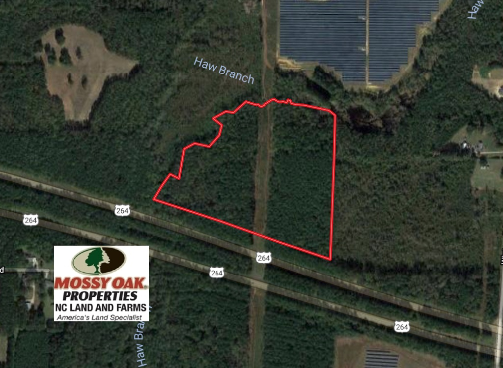 SOLD!  30 Acres of Timber and Hunting Land For Sale in Nash County NC!