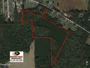 SOLD!  24.5 Acres of Hunting and Timber Land for Sale in Nash County NC!