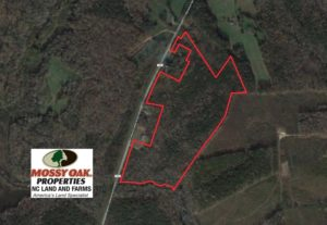 SOLD!  40 Acres of Timber Land For Sale in Warren County NC!