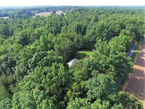 UNDER CONTRACT!  17 Acres of  Recreational Hunting of Land For Sale in Charlotte County VA!