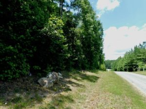 SOLD!  6.45 Acres of Investment Residential Land For Sale in Orange County NC!
