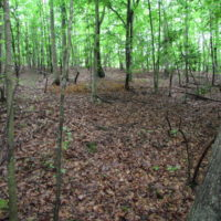 SOLD!  25 Acres of Land with Home in King William County VA!