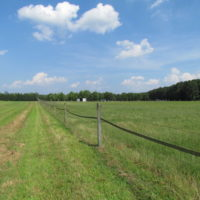 SOLD!  55 Acres of Farm Land with Log Home For Sale in Suffolk County VA!
