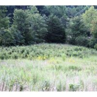 REDUCED! 97 Acres of Hunting Land with Custom Home For Sale in Louisa County VA!