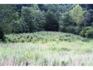 UNDER CONTRACT!  97 Acres Hunting Land with with Custom Home For Sale in Louisa County VA!