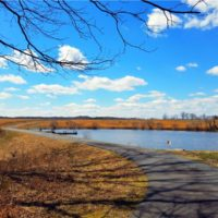 UNDER CONTRACT! 97 Acres of Hunting Land with Custom Home For Sale in Louisa County VA!
