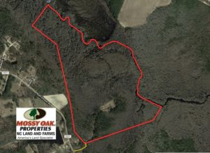 UNDER CONTRACT!  101 Acres of Hunting Land For Sale in Cumberland County NC!