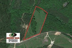 UNDER CONTRACT!  10 Acres of Hunting Land For Sale in Henry County VA!