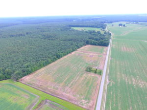 UNDER CONTRACT!  53 Acres of Hunting and Timber Land  For Sale in Suffolk VA!