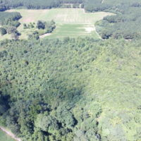 SOLD!  29 Acres of Hunting and Timber Land in Greensville County VA!