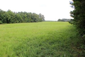 UNDER CONTRACT!  25 Acres of Recreational Land For Sale in Lunenburg County VA!