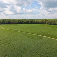 SOLD!  43 Acres of Farm and Timber Land For Sale in Wilson County NC!