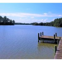 24 Acres of Waterfront Lot off Farnham Creek in Richmond County VA!