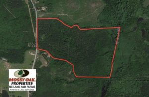 SOLD!  104 Acres of Timber Land For Sale in Franklin County NC!