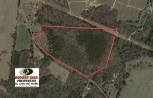 SOLD!  32.7 Acres of Timber and Pasture Land For Sale in Cleveland County NC!
