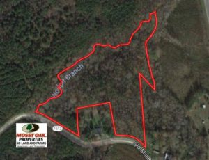 SOLD!  10.08 Acres of Hunting Land For Sale in Warren County NC!