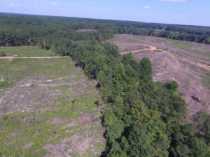 UNDER CONTRACT!  109 Acres of Recreational Hunting Land For Sale in Brunswick County VA!