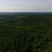 SOLD!  40 Acres of Recreational Land For Sale in Warren County NC!
