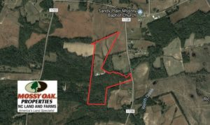 SOLD!  46 Acres of Farm and Timber Land for Sale in Columbus County NC!