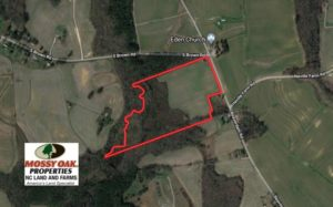 SOLD!  24.5 Acres of Farm and Hunting Land For Sale in Halifax County NC!