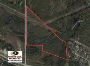 UNDER CONTRACT!  23 Acres of Hunting Land For Sale in Brunswick County NC!