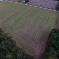 UNDER CONTRACT! 5 Acres of Cleared Building Land For Sale in Suffolk County VA!
