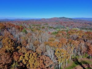 SOLD!  20.18 Acres of Hunting and Timber Land For Sale in Cherokee County NC!