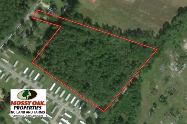 8 Acres Of Hunting Land For Sale In Robeson County Nc Mossy Oak