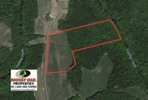 SOLD!  11.7 Acres of Water Front Land For Sale in Nash County NC!