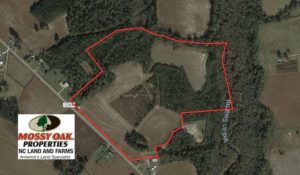 SOLD!  47 Acres of Residential Farm and Timber Land For Sale in Robeson County NC!