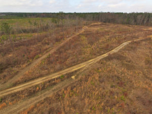 UNDER CONTRACT!  3.73 Acres of Rural Residential Land For Sale in Dinwiddie County VA!