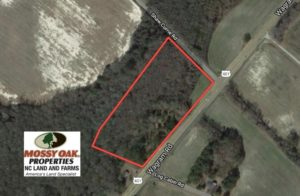 SOLD!  8 Acres of Timber and Potential Commercial Land For Sale in Scotland County NC!
