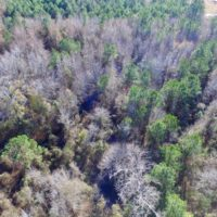 SOLD!  17.94 Acres of Residential and Hunting Land For Sale in Craven County NC!