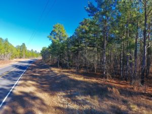 UNDER CONTRACT!  13.81 Acres of Timber, Residential and Recreational Land For Sale in Richmond County NC!
