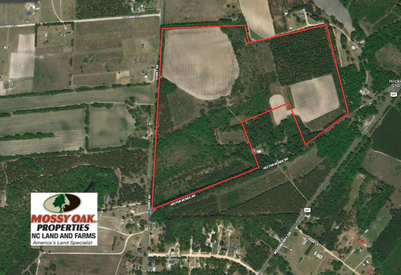 89 Acres of Timber and Farm Land For Sale in Hoke County NC!