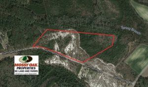 SOLD!  32 Acres of Residential Hunting and Timber Land for Sale in Bladen County NC!