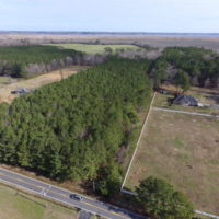 REDUCED!  7.6  Acres of Residential Timber Land for Sale in VA Beach!