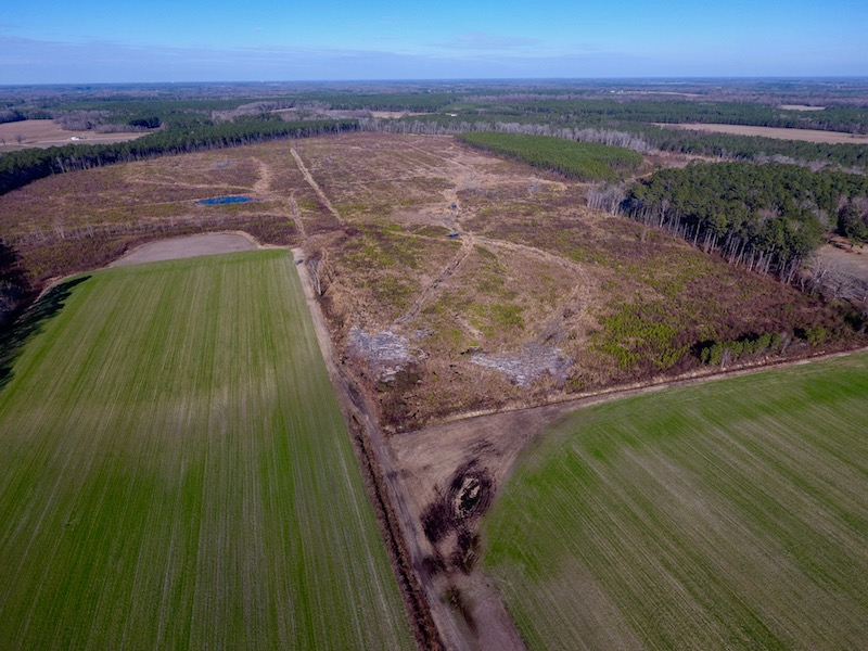 +/- 312 Acres of Farm and Hunting Land For Sale in Edgecombe County NC!