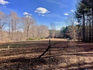 UNDER CONTRACT!  20 Acres of Timber and Equine Pasture Land For Sale in Granville County NC!