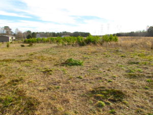 SOLD!  4.2 Acres of Residential Land For Sale in Surry County VA!