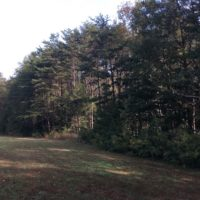 SOLD!  47.42 Acres of Recreational and Residential Land For sale in Charlotte County VA!