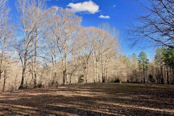 20 Acres of Timber and Equine Pasture Land For Sale in Granville County NC!