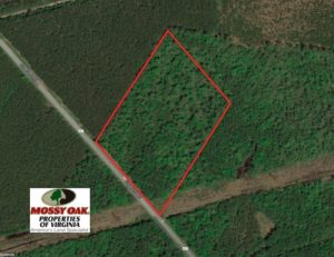 UNDER CONTRACT!  10 Acres of Recreational and Investment Land For Sale in Suffolk County VA!