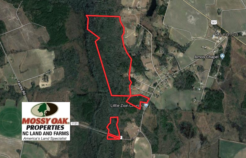121 Acres of Hunting Land For Sale in Robeson County NC!